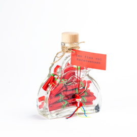 Fles vol kerstwensen kerstman
