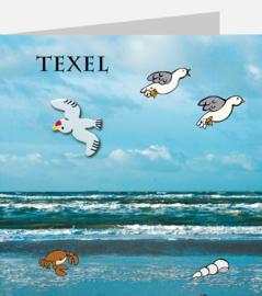 T11 Meeuw Zee