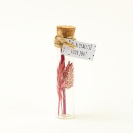 Droogbloem pink 11cm