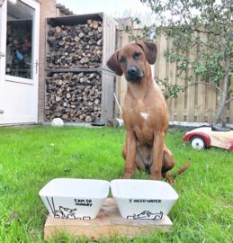 Gepersonaliseerde hondenbakken (set)
