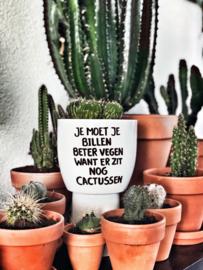 Bloempot cactussen
