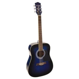 Akoestische gitaar RICHWOOD Artist serie RD 12 Blue Sunburst