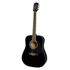 Akoestische gitaar RICHWOOD Artist serie RD 12 black