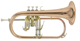 Bach FH-501