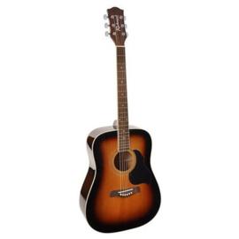Akoestische gitaar RICHWOOD Artist serie RD 12 Sunburst