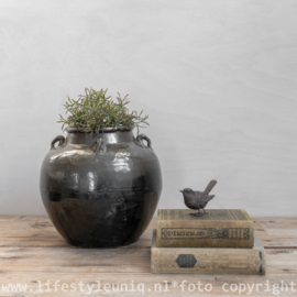 Oude Chinese Pot