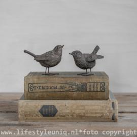 Vogeltje in 2 Modellen
