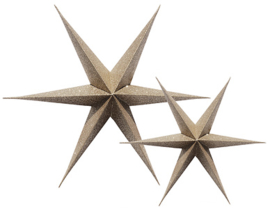 Delight Department Paper Star Gold Glitter set van 2