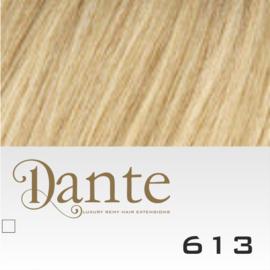 Dante Clip Light kleur 613