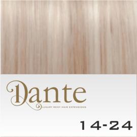 Dante Couture Light kleur 14/24