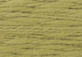 Flambe - 06 kiwi