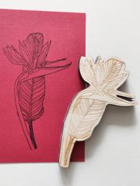 Stempel bloem 3
