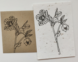 Bedrukte groeipapierkaart + evenloppe bloem 1