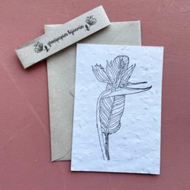 Bedrukte groeipapierkaart + enveloppe bloem 5