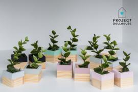 Plantenbakken set