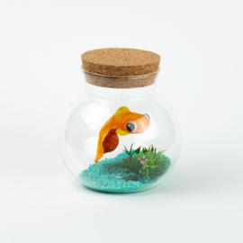 Vissenkom