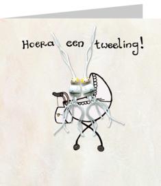 Gelukskaart: Tweeling!