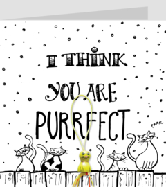 ZW I think you are purrfect