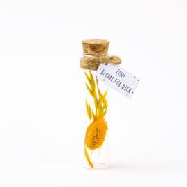 Blumen in Flasche Gelb