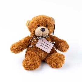 Teddybär Umarmung