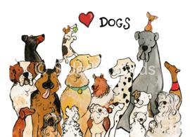 Honden ansichtkaart
