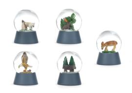 Kikkerland Snow Globes