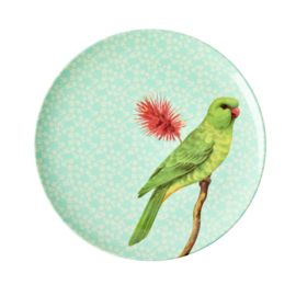 RICE melamine rond lunchbord 20cm - Vintage Bird print - Green (nieuwe collectie High Winter 2019)