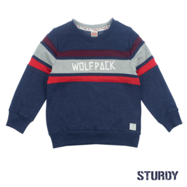 Sweater Wolfpack