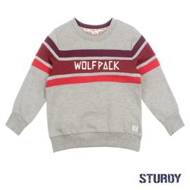 Sweater Wolfpack Grijs