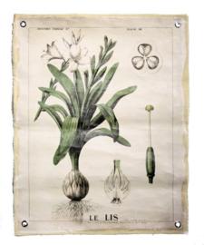 Wandplaat linnen Botanisch 72x0,2x90cm