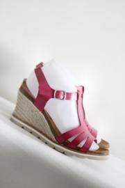 Abril Flowers - Roze lederen t-strap sandalen - Mt 39