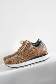 Red Rag - Bruine sneakers met tijgerprint - Mt 39