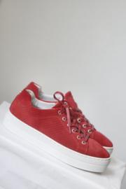 Bullboxer - Rood suede sneakers met plateau - Mt 38, 40, 41 & 42