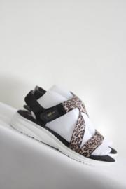Anne Klein Sport - Zwart bruine sandalen met tijgerprint - Mt 41