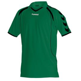 Hummel shirt groen Brasil