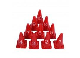 10 Genummerde kegels en pionnen