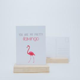 You are my pretty flamingo