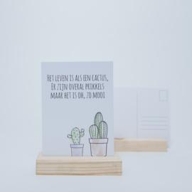 Het leven is als een cactus