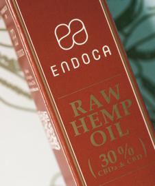 CBD Pasta Raw Golden Spuit (Endoca) 30% CBD 3000mg 10gr