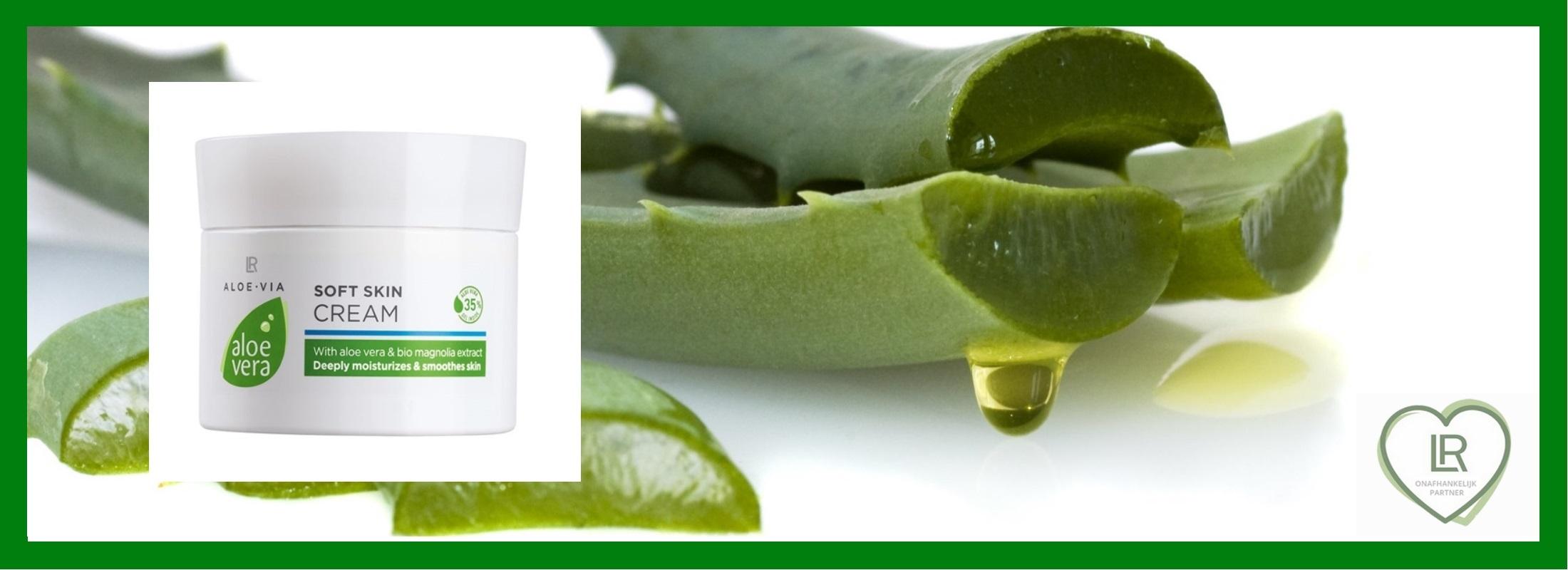 Aloe vera soft skin