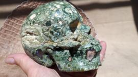 Rhyoliet human skull