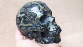 Kambaba jaspis human skull