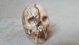 Jaspis human skull