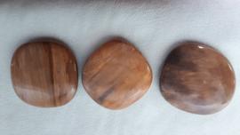Versteend hout platte steen