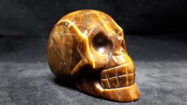 Tijgeroog human skull