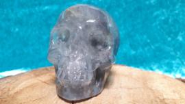 Kwarts grijze human skull