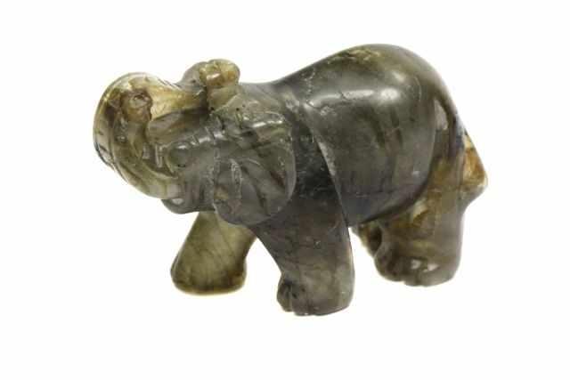 olifant labradoriet