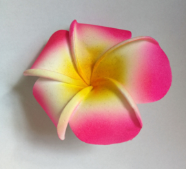 Haaraccessoires - steek Bali in je haar