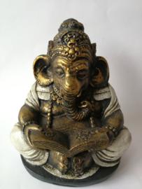 Schitterende grote Ganesha. Lezend in het symbolenboek.