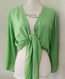 Wikkelvestje pastel groen. Met sierlijk uitlopend wijd mouwtje. Lengte wikkel 200 cm. 100% rayon